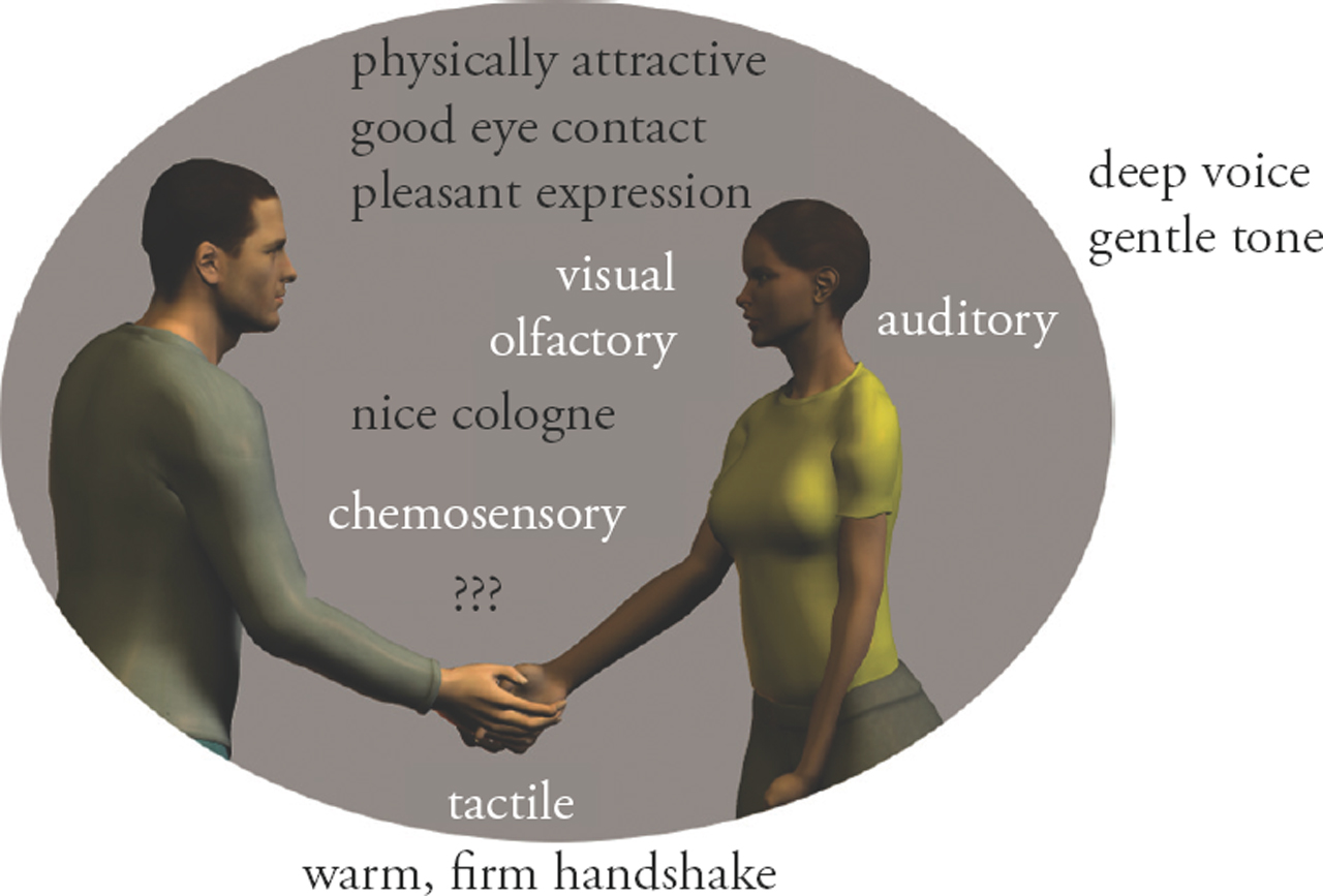 Perception of Nonverbal Cues - Oxford Handbooks